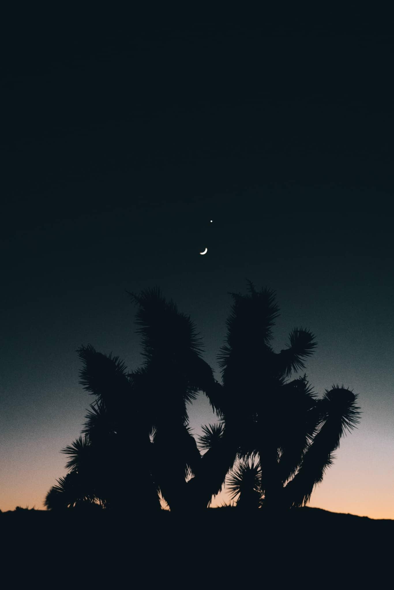 La lune en astrologie