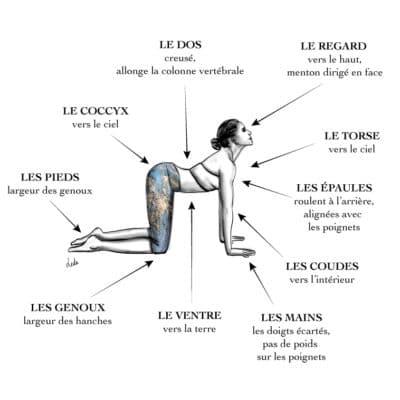 catégorie  posture de yoga  les amazones parisiennes