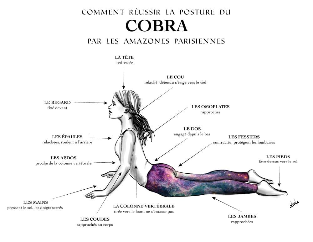 Cobra-Pose-Bhujangasana-fleches-ajustements-illustration-yoga-posture