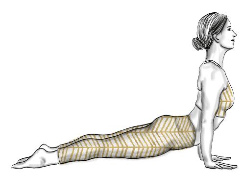 chien-tete-en-haut-updog-yoga-femme