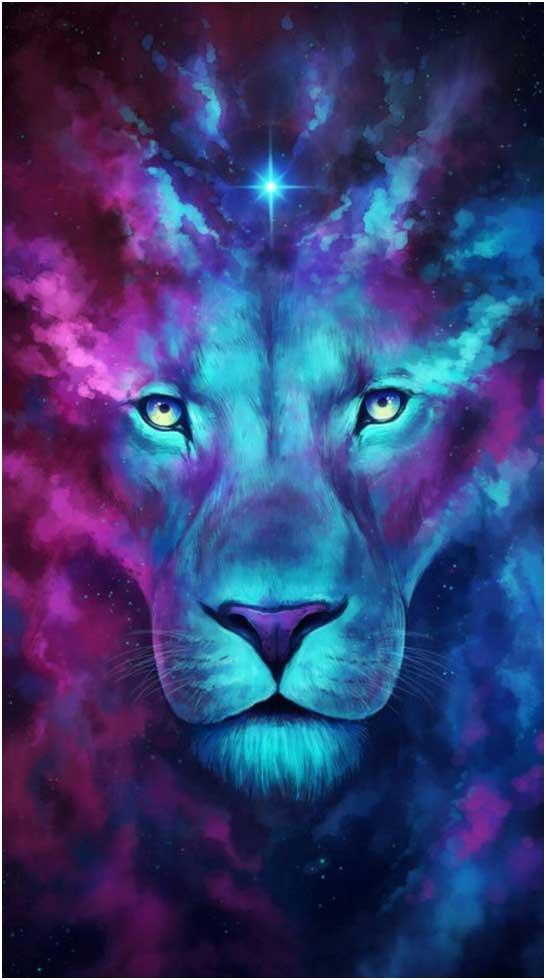lion-portail-du-lion-8aout
